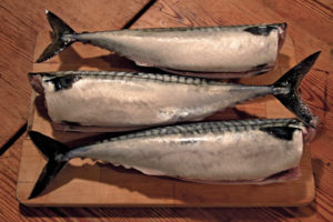 mackerel, healthy fish, omega-3.
